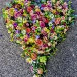 hjerte15